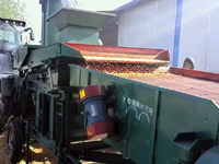 玉米净粮机 去霉粒除杂质效果杠