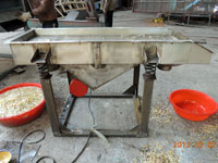 豆芽筛分机-去皮机 不锈钢直线